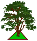 Poltimore Parish Council Logo showing a large oak tree.